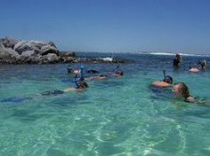 Snorkeling Tours in Destin, Florida - Local Snorkeling Experts Miramar Beach Florida, Destin Florida Vacation, Visit Florida, Destin Beach, Florida Travel, Florida Beaches, Beach Trip, Fort Walton Beach Florida, Mexico Vacation
