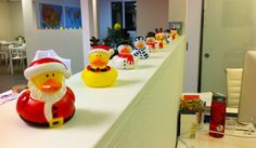 The Houzz Ducky Experience