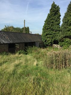 The Farnborough Barn on the day we bought the site. The photo shows the storage sheds to the end of the garden which will be converted into a self-contained studio annexe.