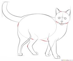 85 Best Realistic Cat Art Images In 2019 Cat Art Draw Animals
