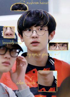 anatomy of chanyeol Exo Ot12, Chanbaek, Park Chanyeol Exo, Kyungsoo, Button Nose, Exo Lockscreen, Btob, E Design, My Sunshine