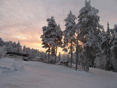 Ir a la Laponia....