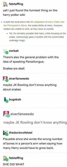 Harry Potter Jokes, Harry Potter Universal, Harry Potter Fandom, Harry Potter World, Harry Potter Snake, No Muggles, Yer A Wizard Harry, Fandoms, Hogwarts