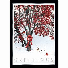 Crimson Tree Holiday Cards   Animal Christmas Cards   Deluxe.com