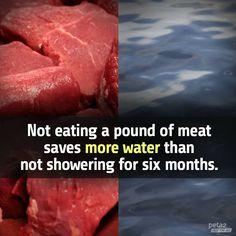 save water by going #vegan #vegetarian