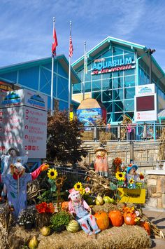 Gatlinburg decked out for the Fall season!