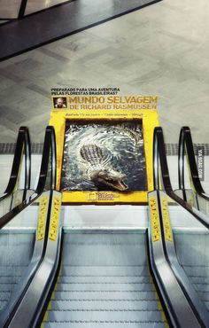 Awesome escalator ad for National Geographic http://www.arcreactions.com/services/online-marketing/ #adds