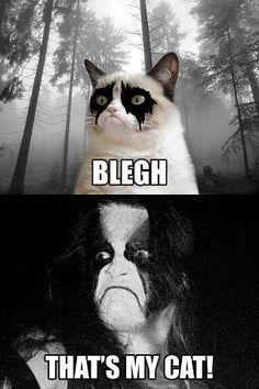 #metalmemes   #grumpycat   #abbath   #immortal