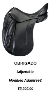Schleese's new Obrigado...THE BEST!!!!   especially if your horse is short backed!!!