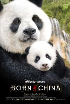 Watch Born in China 2017 Movie Online Free HD