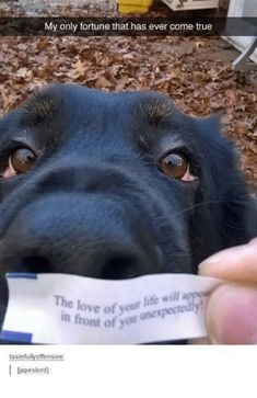 And this photo is proof that fortunes can come true. | 21 Pictures That Will Restore Your Faith In Love