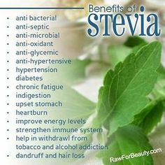 Stevia . . . the healthy substitute of sugar!