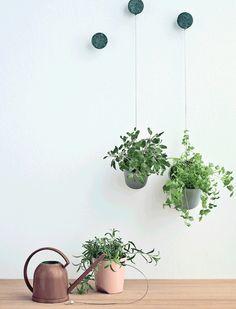 At omgive os med grønne planter gør os godt. Så træk sommerens grønne frodighed med ind i boligen til efteråret. Her er 10 inspirerende idéer til, hvordan du bor med potteplanter.