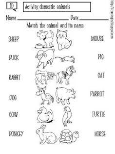 Esta ficha ha sido creada para enseñar a los niños/as los animales domésticos. El niño/a debe unir la palabra y el animal correcto. Luego de terminar la actividad, puede colorear los animales que hay en la ficha.