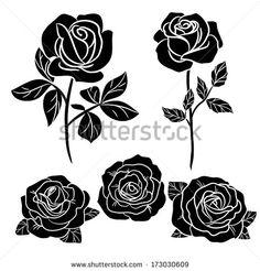 dark roses on white - stock vector