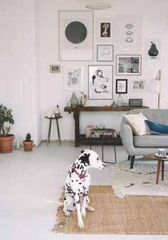 Home sweet home - Salon / Le chien à taches