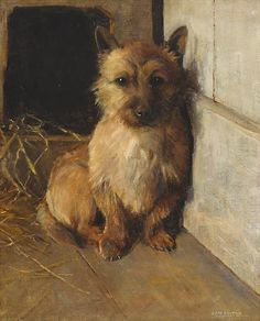 Samuel Fulton (British, 1855-1941) A Cairn Terrier in a kennel 18 x 14in (45.7 x 35.6cm)