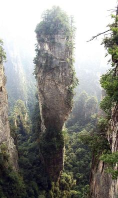 This is the Southern Sky Column In the Zhangjiajie National Forest Park, China.  This quartz sandstone monolith is 3,544 feet tall.