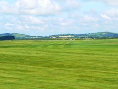 The Curragh, Co. Kildare