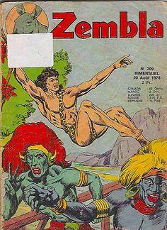 Zembla est le héros d'un Petit Format créé en 1963 par les Éditions Lug.La série originale fut publiée sans interruption jusqu'aux années 1980.Zembla s'appelle dès lors Pierre Marais, son surnom signifiant « L'homme-lion ». Il a la double nationalité française et du Karunda (pays imaginaire situé en Afrique équatorienne), fils de Paul Marais et d'Ula. Son grand-père maternel s'appelle Naghar.......SOURCE WIKIPEDIA.ORG.......