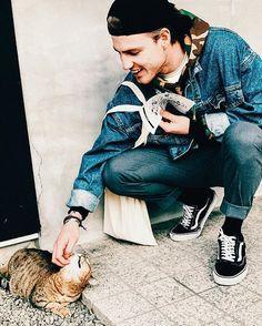 Instagram media by thomasdavenport - GOOD NEWS I FOUND A CAT