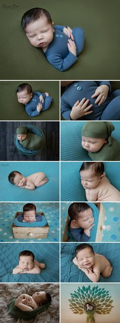 9 day old Patrick and his blue/green themed newborn photo shoot in studio.  Sunny S-H Photography Winnipeg