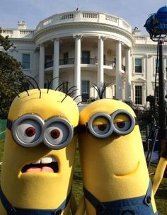Minions in front of white house via www.Facebook.com/DespicableMe