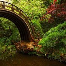 secret garden, jardin secret , giardino segreto, geheimen Garten ,секретный сад