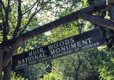 Yksi hienoimpia kokemuksia San Franciscossa oli ehdottomasti retki Muir Woods National Monumentille. Muir Woods on kansallispuisto San Franciscon...