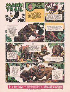 Sunday Comics 5 : Mark Trail by Ed Dodd -- 1965 Lone Ranger, Paul Newman, Vintage Comics, Vancouver, Comic Art, Trail, Sunday, Gallery, Domingo