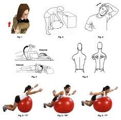 rotator cuff exercises - Google Search Rotator Cuff Rehab, Rotator Cuff Exercises, Arthritis Exercises, Shoulder Injury Exercises, Shoulder Injuries, Shoulder Rehab, Shoulder Problem, Exercise Images, Stretches For Flexibility