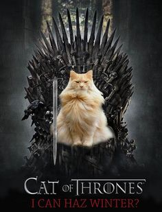 24 Cat of Thrones Posters