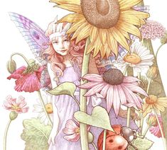 Fairy_Sample_Cropped_webYvonne Gilbert