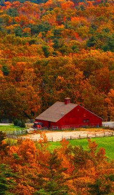Beautiful Fall Foliage & red barn / - - Your Local 14 day Weather FREE >… Autumn Scenes, Old Barns, Country Barns, Country Fall, Country Living, Fall Pictures, Farm Life, Belle Photo, Autumn Leaves
