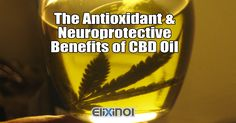 Two Biggest Benefits of CBD Oil Among the several health benefits of CBD oil, the most important one seems to be the ability to protect against neurodegenerative diseases. https://elixinol.com/blog/two-major-benefits-of-cbd-oil/