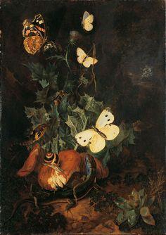 "reservoirrr:  "" Carl Wilhelm de Hamilton (1668 or 1670-1754)  Forest Vegetation with Snake, Lizard and Butterflies  """