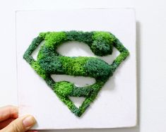 [New] The 10 Best Home Decor Today (with Pictures) Plant Crafts, Garden Crafts, Diy Crafts, Moss Wall Art, Moss Art, Biscuit, Moss Garden, Kraft Gift Boxes, Spring Green