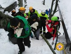 Because we could all use a bit of good news these days…here's a brief animal rescue video guaranteed to make you smile. After an avalanche came down on a hot