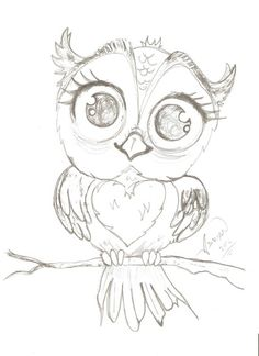 Cute owl                                                                                                                                                                                 More