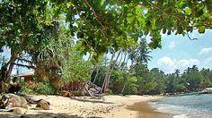 Les plages de la côte Sud