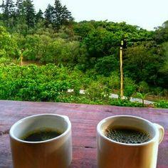 Buenos Días Amigos! Empezando el Día con Café!  #panama #coffee #coffeetime