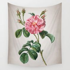Buy Vintage Pink Wild Rose Wall Tapestry by allthingstore. Worldwide shipping available at Society6.com. Just one of millions of high quality products available.