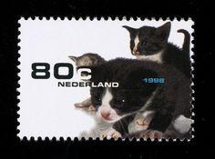 Postzegel Nederland 1998 Flora en fauna: Jonge Poesjes