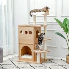 "Tucker Murphy™ Pet 35"" Cohasset Climbing Cat Tree | Wayfair Cat Tree Condo, Cat Condo, Cat Activity Centre, Cat Castle, Sisal Rope, Plush Carpet, Cat Scratching Post, Cat Climbing, Have Time"