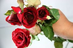 How to Dry Roses: 4 Methods. Going to use one of these methods post-wedding to preserve my rose & hydrangea bouquet!