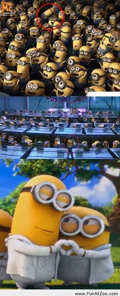 Despicable me scenes have been carefully looked at to spot that there is a couple in the minions! Universal say this was on purpose to see how many would notice and how many look past the minions! Amor Minions, Cute Minions, Minions Despicable Me, My Minion, Minions Quotes, Minions 2014, Minion Humor, Minion Banana, Minions Images