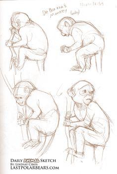 Daily_Animal_Sketch_060