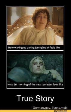 lord of the rings jokes | ... ,funny pictures,auto,demotivation,The Lord of the Rings,study,college