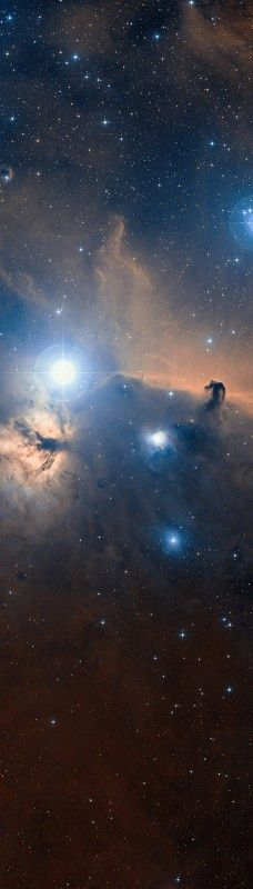 The Horsehead Nebula (also known as Barnard 33) is a dark nebula in the constellation of Orion. The nebula is located near the star Alnitak, which is farthest east on Orion's Belt, and is part of the much larger Orion Molecular Cloud Complex. The nebula was first recorded in 1888 by Scottish astronomer Williamina Fleming.