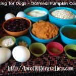 Cooking for Dogs - Oatmeal Pumpkin Cookies